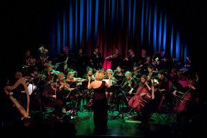 Cavan Sinfonia Orchestra Sunday 19 November, Townhall, Cavan