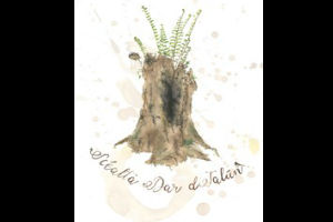 Scéalta dar dTalún, Stories of Our Land