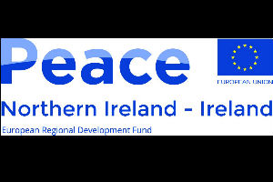 PEACE IV Request for Tender - Musicians, Writers, Visual Art/Curation and Theatre