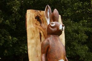 Dún a Rí Public Art Commission