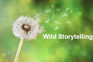 Nature and Landscape - Cavan Wild Storytelling with Anthony J.Quinn